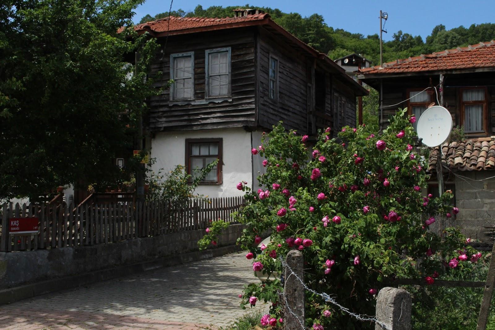 Ağva Köy Evleri